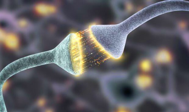 science-happiness_synapses-620x368